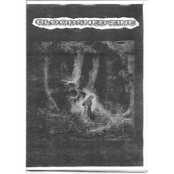 BloodShed Zine n2 - Fanzine